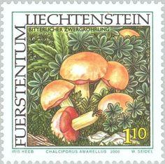 Stamp: Chalciporus amerellus (Liechtenstein) (Mushrooms) Mi:LI 1253,Sn:LI 1194,Yt:LI 1194,Zum:LI 1196