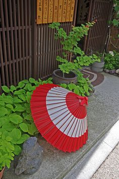 Japanese umbrella as an exterior of the shop, Nagano, Japan