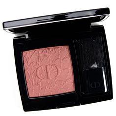 Dior Lipstick, Velvet Lipstick, Tom Ford Black Orchid, Super Glow, How To Match Foundation, Bite Beauty, Warm Undertone, Lipstick Swatches, Makeup Storage