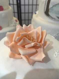 Beautiful sugar craft by Bella. Bella's Secret at the Enterprise Shopping Centre, Eastbourne http://enterprise-centre.org/shop/bellas-secret