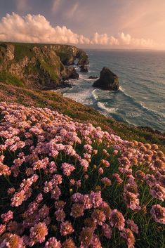 Spring is in the air | golden hour at Bedruthan Steps. Cornw… | Milos Lach | Flickr Nature Aesthetic, Flower Aesthetic, Beach Aesthetic, Simple Aesthetic, Spring Aesthetic, Aesthetic Collage, Travel Aesthetic, Aesthetic Vintage, Aesthetic Fashion