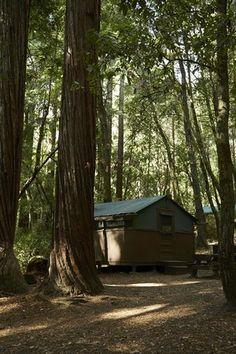 Big Basin Tent Cabins Glamping California, Big Basin Redwoods, Arapahoe Basin, Cabin Doors, Boulder Creek, Mountain Park, Redwood Forest, Big Tree, Bouldering