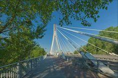 Most Świętokrzyski, Warszawa Fot. Zdjęcia Warszawy