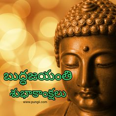 staples buddhist singles Buddhist women 100% free buddhist singles with forums, blogs, chat, im, email, singles events all features 100% free.
