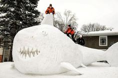 Minnesota brothers build massive snow shark in their front yard
