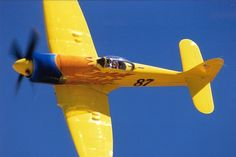 "Hawker Sea Fury ""Miss Merced"""