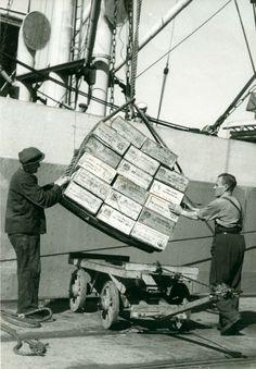 Oslo havn1945 Havnearbeidere Tralla er klar til å lastes opp med kasser.
