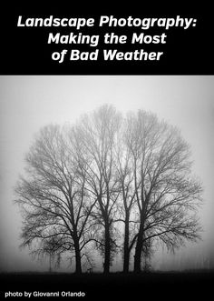Making the Most of Bad Weather - tips for landscape and nature photography
