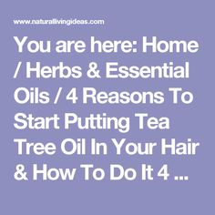 You are here: Home / Herbs & Essential Oils / 4 Reasons To Start Putting Tea Tree Oil In Your Hair & How To Do It 4 Reasons To Start Putting Tea Tree Oil In Your Hair & How To Do It November 11, 2016 by Sierra Bright Our sponsors, Thrive Market, want to send every Natural Living Ideas reader a free 22 oz jar of Super Raw Organic Unfiltered Honey - usually $29. Click here to claim your free jar.       Tea tree oil is used on its own or mixed with other ingredients in so many effective home…