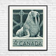 Walrus walruses walrus prints walrus art walrus by CanadaStampArt Animal Art Prints, Historical Art, Poster Size Prints, Lion Sculpture, Fine Art, Wall Art, Gallery, Illustration, Artwork