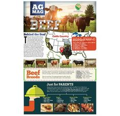 "Beef Ag Mag - A new beef ""Ag Mag,"" developed by the American Farm Bureau Foundation for Agriculture and funded in part by the Beef Checkoff, is available for purchase in classroom sets of 30 and in free eReader format. https://www.dmsfulfillment.com/FarmBureau/DMSStore/Product/ProductDetail/24678"