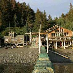 @Sadie Wilderness Cove Resort, Teluk Kachemak Taman Negara, Alaska. Ekowisata ini terletak di pantai terpencil di Teluk Kachemak, Tempat yg baik utk melihat beruang, paus, menonton burung, berjalan kaki atau bersantai.