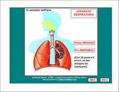 """GIOCHI DIDATTICI Il programma """"Il cammino dell'aria -Apparato respiratorio"""" è suddiviso in due sezioni: """"Prima ripasso!"""" e """"Poi, rispond..."""