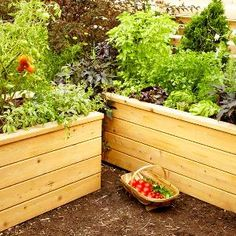Build Your Own Self-Watering Planter Build a raised planting bed and have tonight's salad at your fingertips! Save water and grow healthier veggies and flowers with a self-watering planter. This attractive cedar design uses perforated drain pipe to stor Planter Box Plans, Diy Planter Box, Wooden Planters, Diy Planters, Succulent Planters, Diy Self Watering Planter, Succulents Garden, Hanging Planters, Outdoor Planters