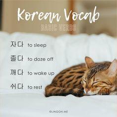 Learn Korean vocabulary: basic verbs at Lingoh!