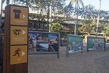 Projeto Tamar de Praia do Forte, Bahia.