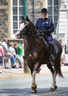 Sarge and Chris Marinelli, Halifax Regional Police Mounted Unit