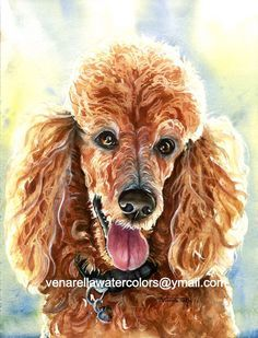 Image result for poodle fine art