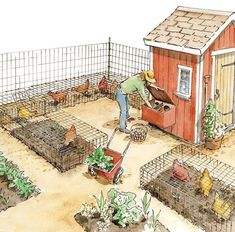 """... As if fresh, nutritious eggs and homegrown roast chicken dinners weren't reason enough to raise your own poultry: You can """"recoop"""" much of the expense of raising chickens by putting their manure to work in your garden and enlisting your birds for organic pest control.  #organicpestcontrol #raisingchickens #controlpestsingarden"""