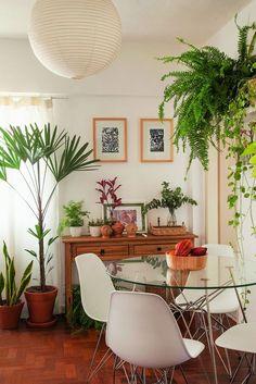 Plantas na sala de jantar.