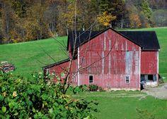Late summer farm