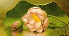 """Martin Johnson Heade  """"Lotus Blossom"""""""