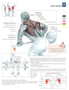 Bodybuilding and Fitness Bodybuilding and Physique Athletes Sport Fitness, Muscle Fitness, Mens Fitness, Muscle Men, Crossfit Motivation, Weight Training, Weight Lifting, Biceps Training, Power Training