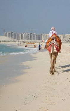 The Dubai beaches are stunning hey are open all year around so you can plan a winter vacation with the family if that is your preferred time to travel. Make sure you ride a camel while your there. Dubai City, Dubai Uae, Brunei, Dream Vacations, Vacation Spots, Maldives, World Expo 2020, Laos, Places To Travel