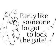 Party like a poodle: nothing against the Master's  Approval!