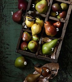 9 #pear varieties, and how to cook with and enjoy them.    #recipes
