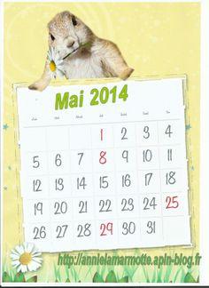 calendrier mai 2014