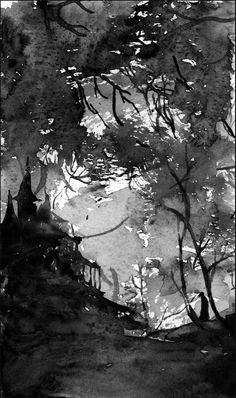 Gloomy forest, black and white, watercolor.