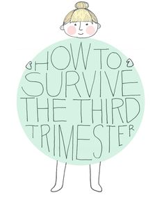 How to Survive the Third Trimester | Sycamore Street Press