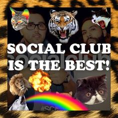 ANIMALS AND SOCIAL