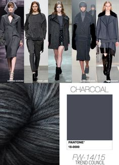 CHARCOAL fall winter 2014 15 colours trends (and I love charcoal! Lady Like, 2014 Fashion Trends, 2014 Trends, Fashion Colours, Colorful Fashion, Soft Summer Color Palette, Deep Winter Colors, Winter Typ, Dark Winter