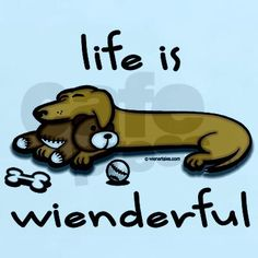 Life Is Wienderful! How true, now for Lucy in her new home!