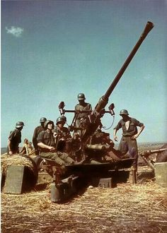Hungarian 40mm Bofors