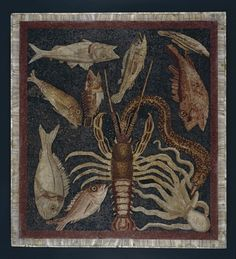 Central panel (emblema) from a triclinium  mosaic showing marine life, the panel shows eleven different edible sea-creatures, all identifiable today, made using tiny tesserae in a technique called opus vermiculatum - (I cent.AD)  from Populonia, Tuscany, Italy - British Museum