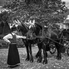 #fotoelvey #swisswedding #schweizerhochzeit #swissweddings #swissweddingphotographer #switzerland #destinationwedding #hochzeit #schweiz #weddingtransport #horseandcarriage