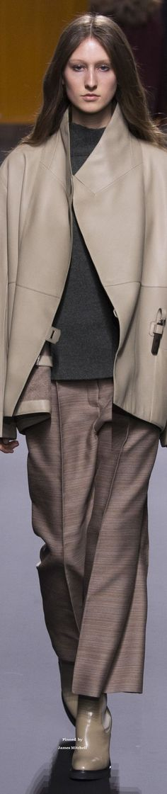 Hermès Collection Fall 2016 Ready-to-Wear