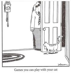 Games you can play with your cat : Farside