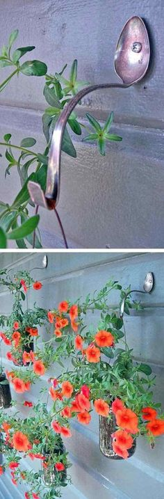 15 DIY Backyard Design Ideas That Will Refresh Your Landscape This Spring