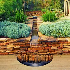 Oh My Goodness!!!!!  -  Mission-style Stream  -  A shallow stream neatly bisects this San Luis Obispo backyard and cascades over a stone wall into a pool. Kangaroo paw adds   a touch of drama to the palette of olive and gray-greens.  (Love those plants too!)