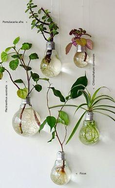 Reciclaje agradable!!