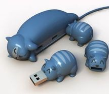 Inspiring picture animals, blue, cat, cute, flash drive. Resolution: 390x325 px. Find the picture to your taste!