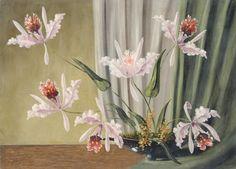 ✨ Unbekannter Künstler - Stilleben mit Orchideen. 1. H. 20. Jh., Öl auf Malpappe, 42 x 58 cm