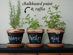 Blackboard paint your herb pots for easy labeling http://www.myhomerocks.com/2012/03/indoor-herb-gardens-and-salad-walls/