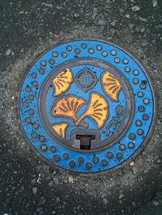 Japanese Manhole Cover - I so wish this concept was more widespread.