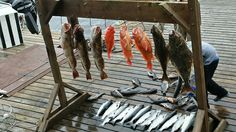 Sure Strike Lodge Craig, Alaska 2014