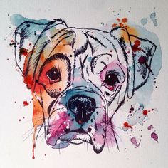Ink and watercolour boxer More